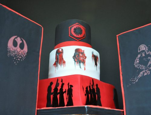 William's 11th Birthday Party – Star Wars Praetorian Guard Theme